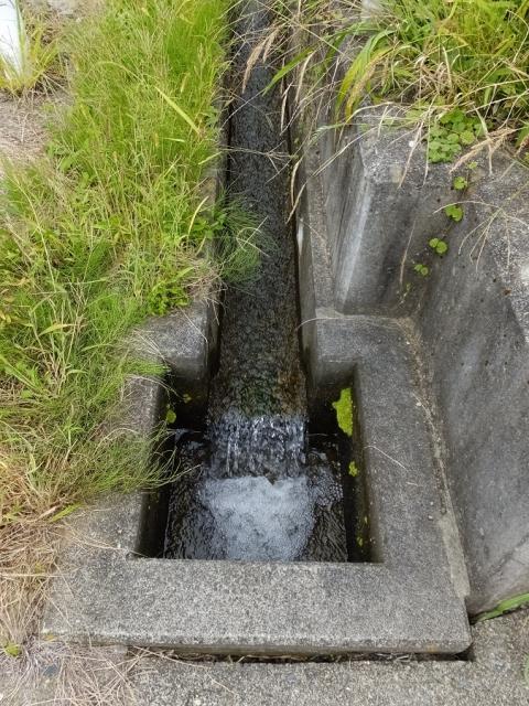 平林の棚田内の用水路