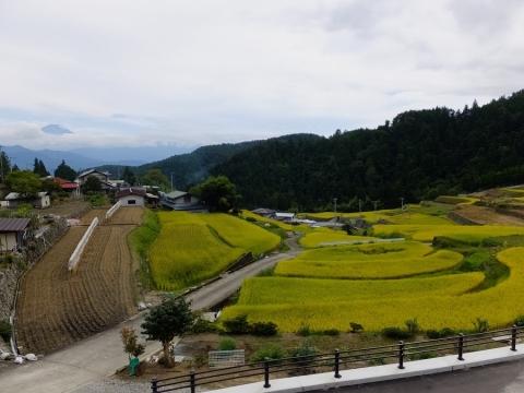 平林の棚田・山梨県富士川町
