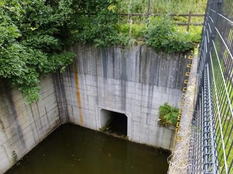 平林桜池の排水施設・コンクリ桝