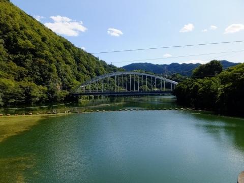 津久井大橋より相模湖を望む
