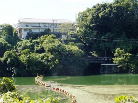 相模湖に架かる月夜野橋