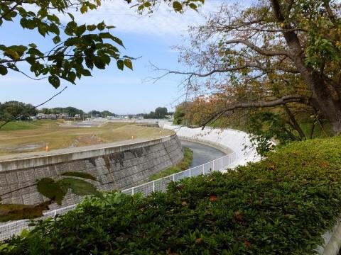 引地川左岸から下土棚遊水地A池の眺め