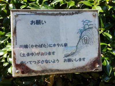万力林(万力公園)のホタルの看板