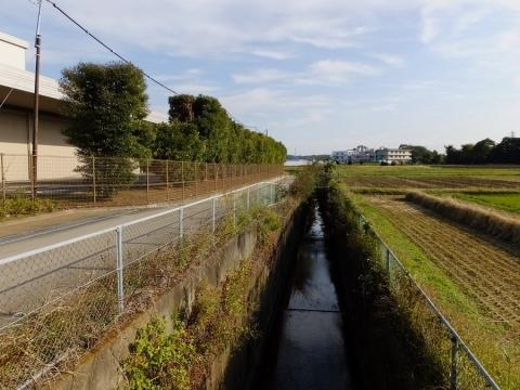 寒川町小動の排水路