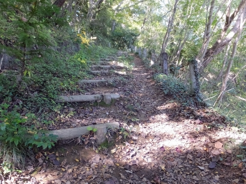 城山湖ハイキングコースへの道