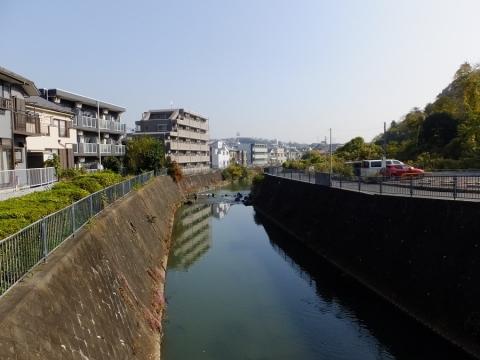 帷子川・学校橋より下流を望む