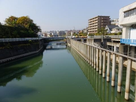 帷子川分水路取水庭