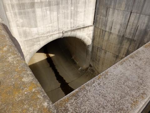 帷子川分水路トンネル入口