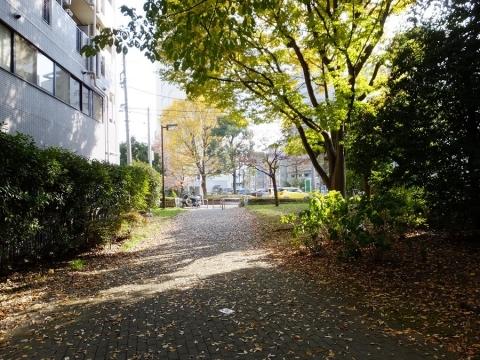 新田間川緑地