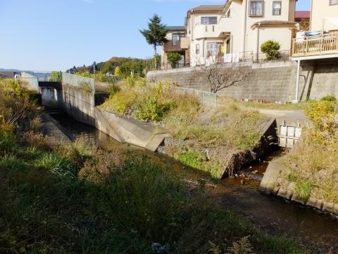 本郷・根岸遊水地下流の境川・排水フラップゲート