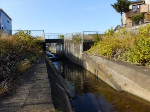 本郷・根岸遊水地下流の境川