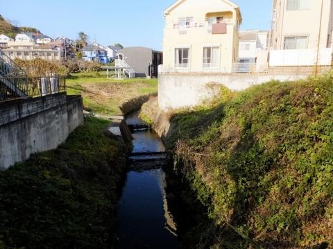境川に合流直前の真米川