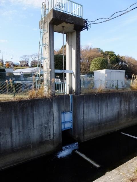栗原遊水地B池(下)・排水ゲート