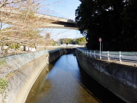 第三水源橋より目久尻川上流の眺め