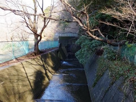 弁天どぶへ流入する河川