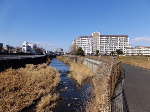 境川・鶴金橋上流