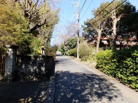 鹿嶋神社前の道