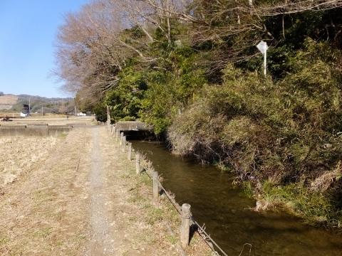 陽原段丘崖沿いの大堀と望地河原の田んぼ