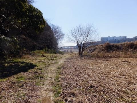 望地・塩田田んぼの南端