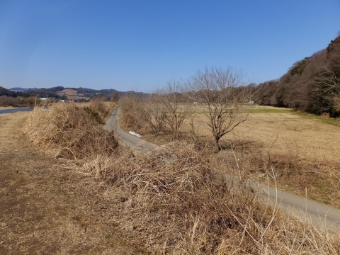 望地河原の田畑