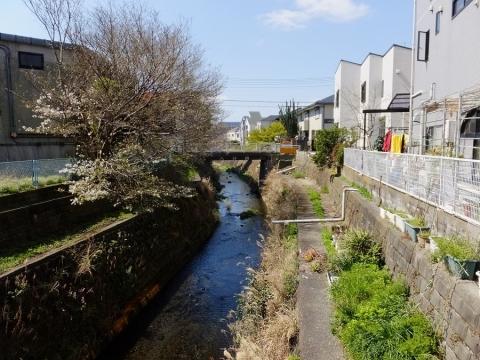 日野川・港南橋