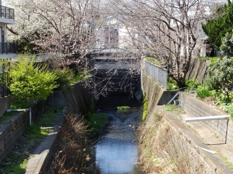 日野川の日野水門