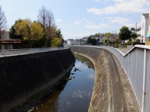 日野川・日吉橋より上流を望む