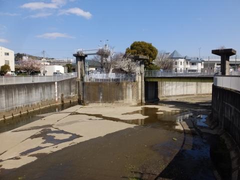 大岡川分水路・日野川取水庭