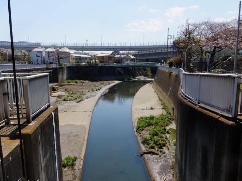 大岡川水門から見た大岡川取水庭