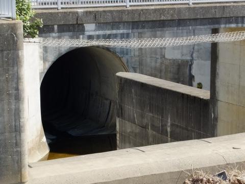 大岡川トンネル入口