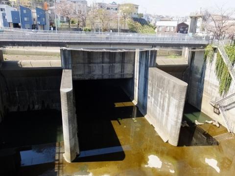 大岡川取水庭・日野川トンネル出口