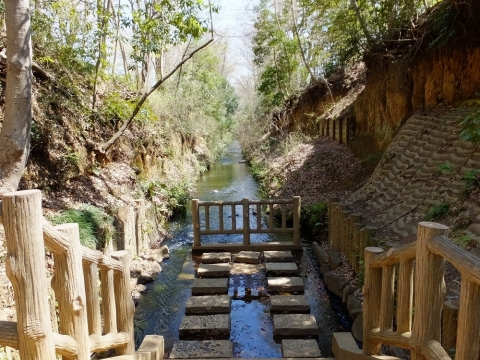 上水小橋下流の玉川上水