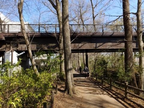 新堀用水・玉川上水に架かる栄光橋
