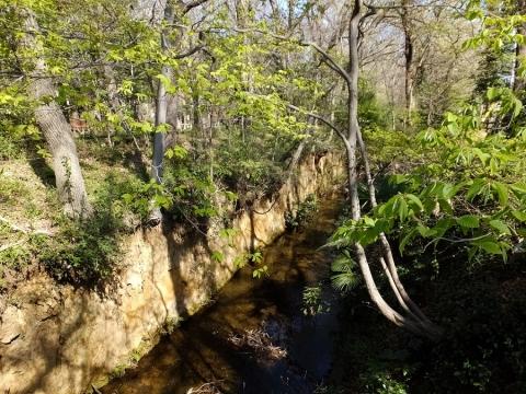 鷹の橋より玉川上水下流を望む