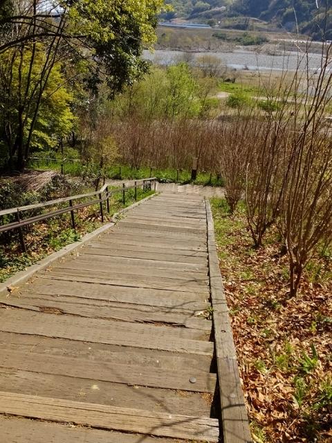 相模川自然の村公園パノラマ散策路