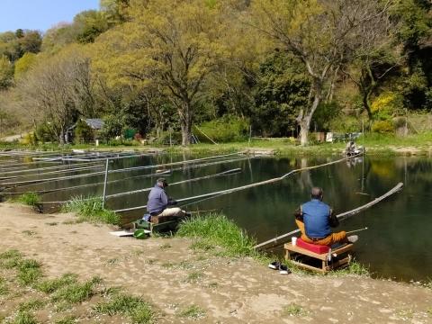 相模川自然の村付近のヘラブナ釣り堀