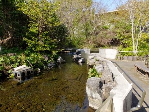 魚類生態試験池