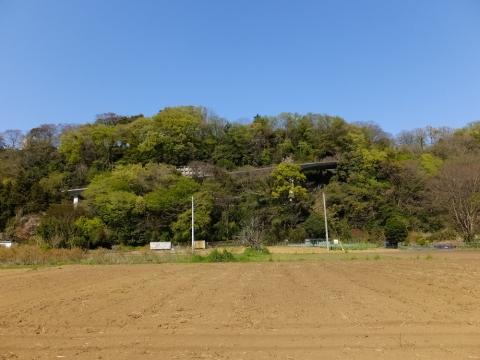相模原市大島の段丘崖と大嶋坂