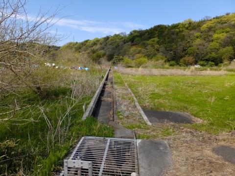 相模川の中州内の用水路・相模原市緑区大島