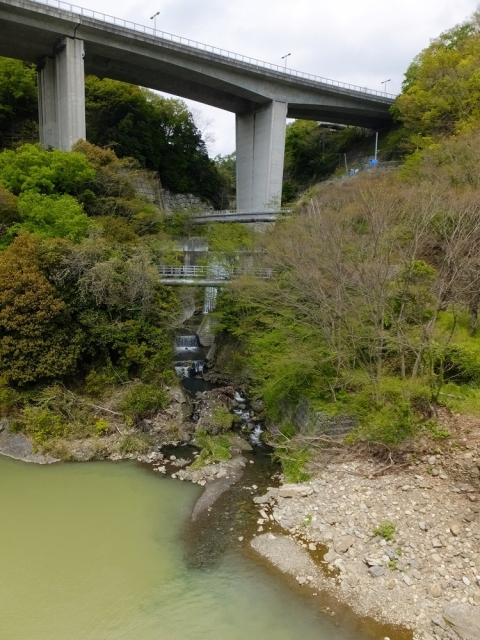 相模川に合流する谷津川