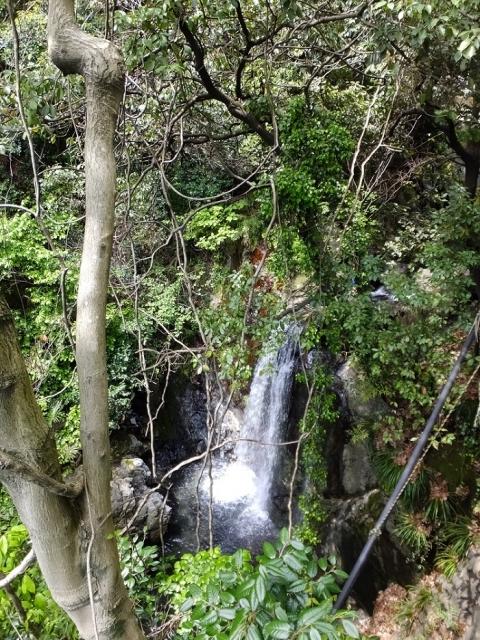 谷津川の女滝
