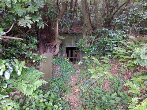 中村家水源池
