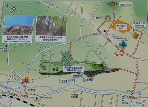 勝坂遺跡公園周辺案内図