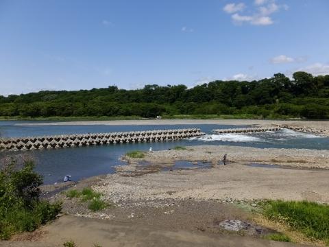 相模川の固定堰・相模原市緑区葉山島