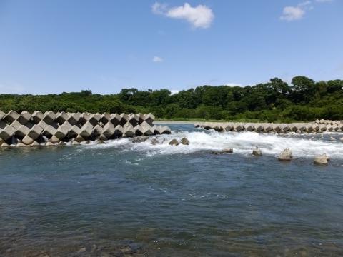 相模川の固定堰、導流堤