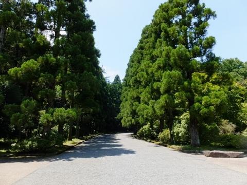 武蔵陵墓地(多摩御陵)表参道
