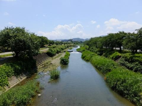 横山橋より南浅川下流を望む