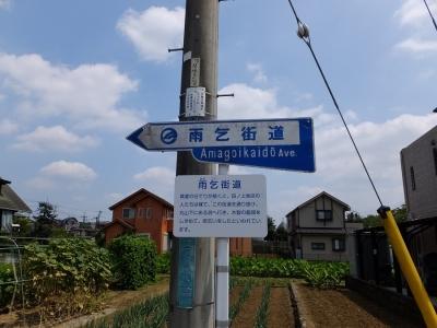 羽村市の雨乞街道