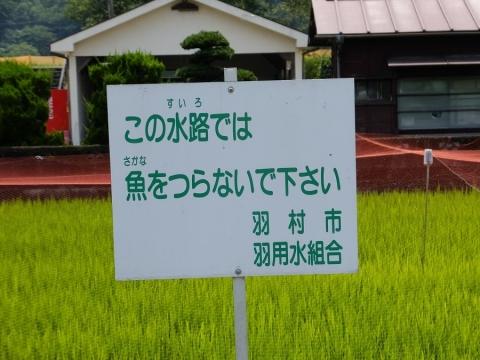 羽村市羽用水組合の注意看板