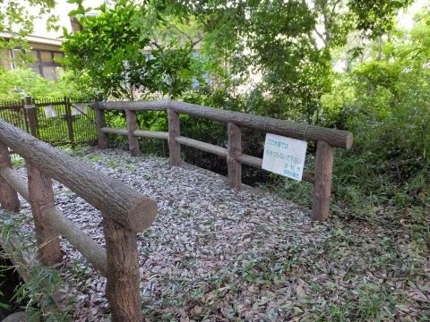 羽用水に架かる橋・阿蘇神社参道脇